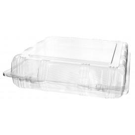 Envase Tapa Bisagra Repostería PET 22x22x6cm (20 Uds)
