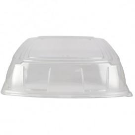 Tapa Plastico PET Transparente Bandeja 40x40cm (5 Uds)