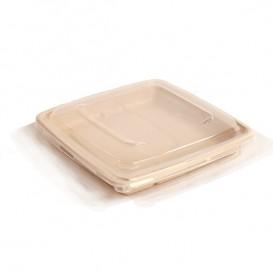 Tapa Plástico PP Envase Caña de Azúcar 23cm (25 Uds)